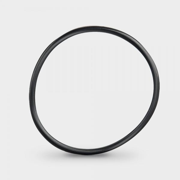 Dichtung Gehäuse/Quartzglas für UV-Poolsana