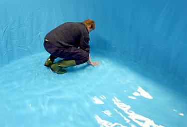Pool handlauf richtig ersetzen und montieren poolsana for Poolfolie montieren